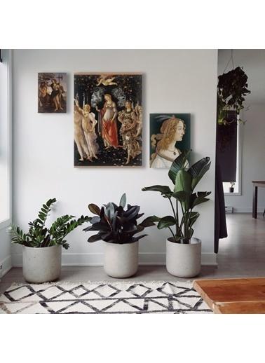 Artikel Botticelli Kanvas Tablo Seti Renkli